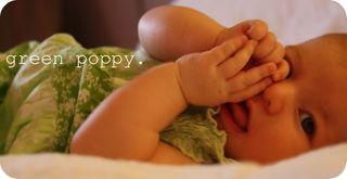 Greenpoppy