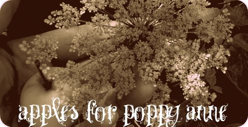 Apples for poppy anne