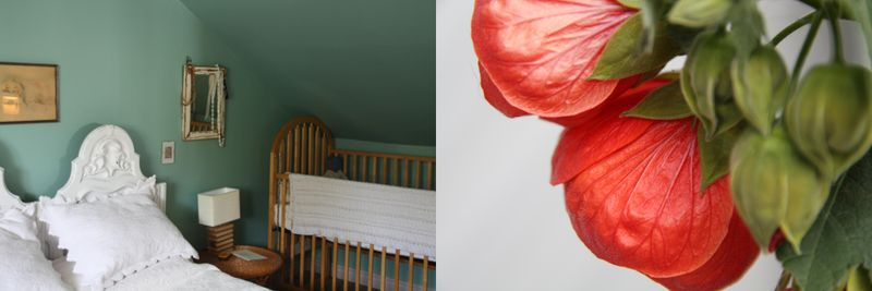Redflowerbluebedroom